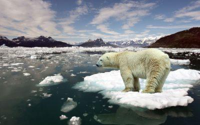 Crisi climatica, per evitare l'impensabile, impegniamoci a fare l'impossibile