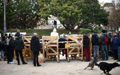 Marsiglia: il volo nero dei corvi su La Plaine