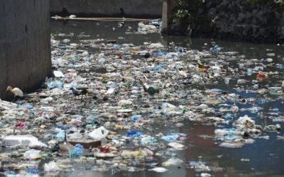Mozione per abbandonare l'uso di stoviglie di plastica