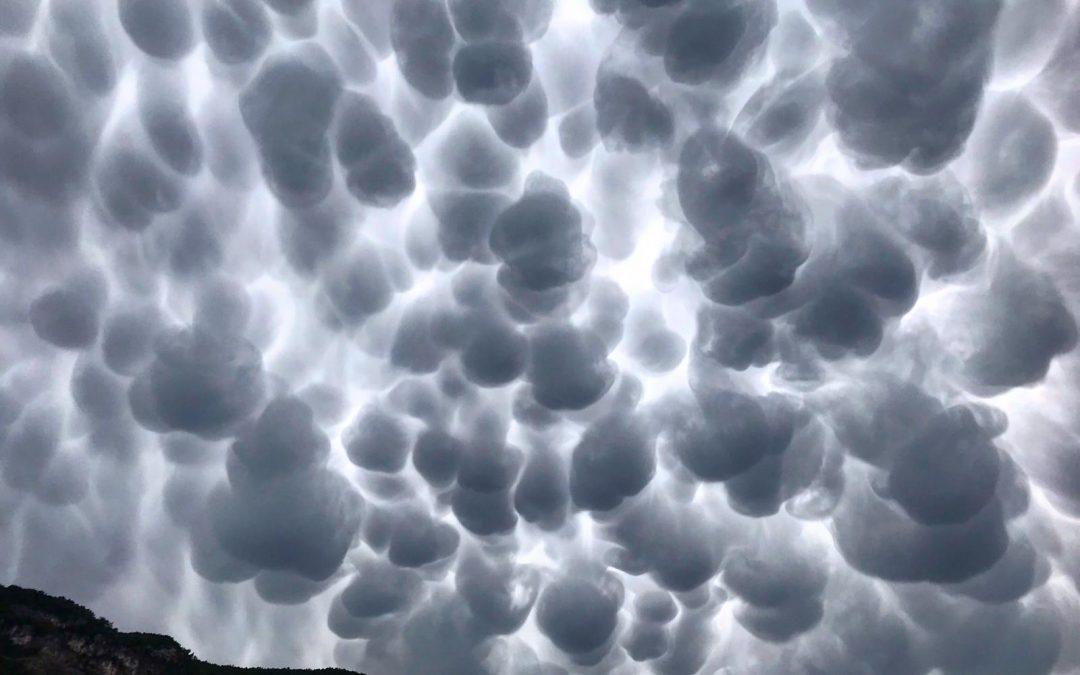 Gli scienziati e il clima: lanciatori di allarmi, cautela o spinta al climaticidio?