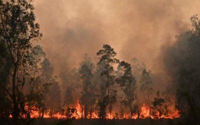 Australia, emblema del disastro ambientale