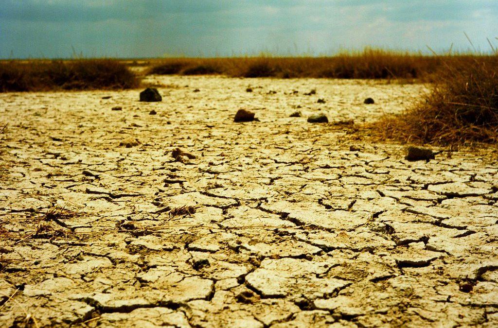 Tra 50 anni, un caldo invivibile per 3,5 miliardi di persone. Migrazioni, muri, morte…