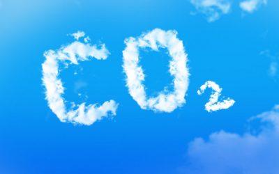 """Riscaldamento globale: """"Nonostante la pandemia, la CO2 raggiunge un nuovo record"""""""