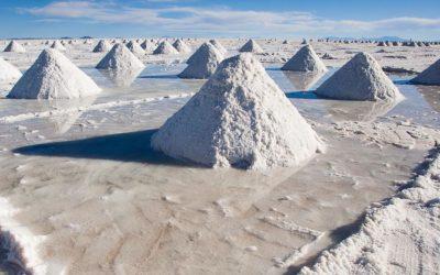 Elon Musk e il colpo di stato in Bolivia per il litio: la risorsa strategica del futuro