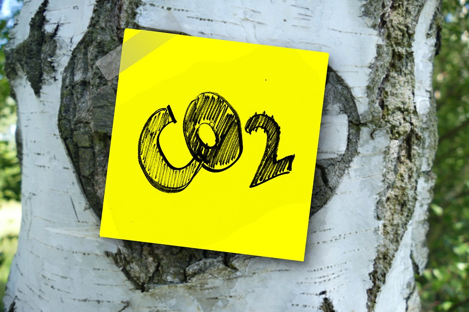 Tassa sulla CO2, la grande truffa…