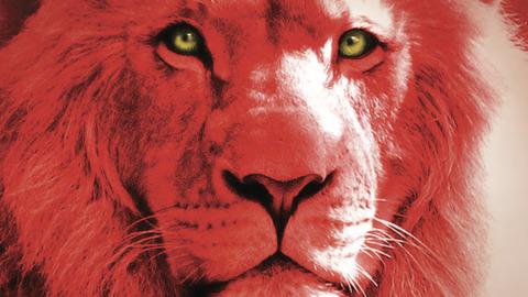 La sera leoni…