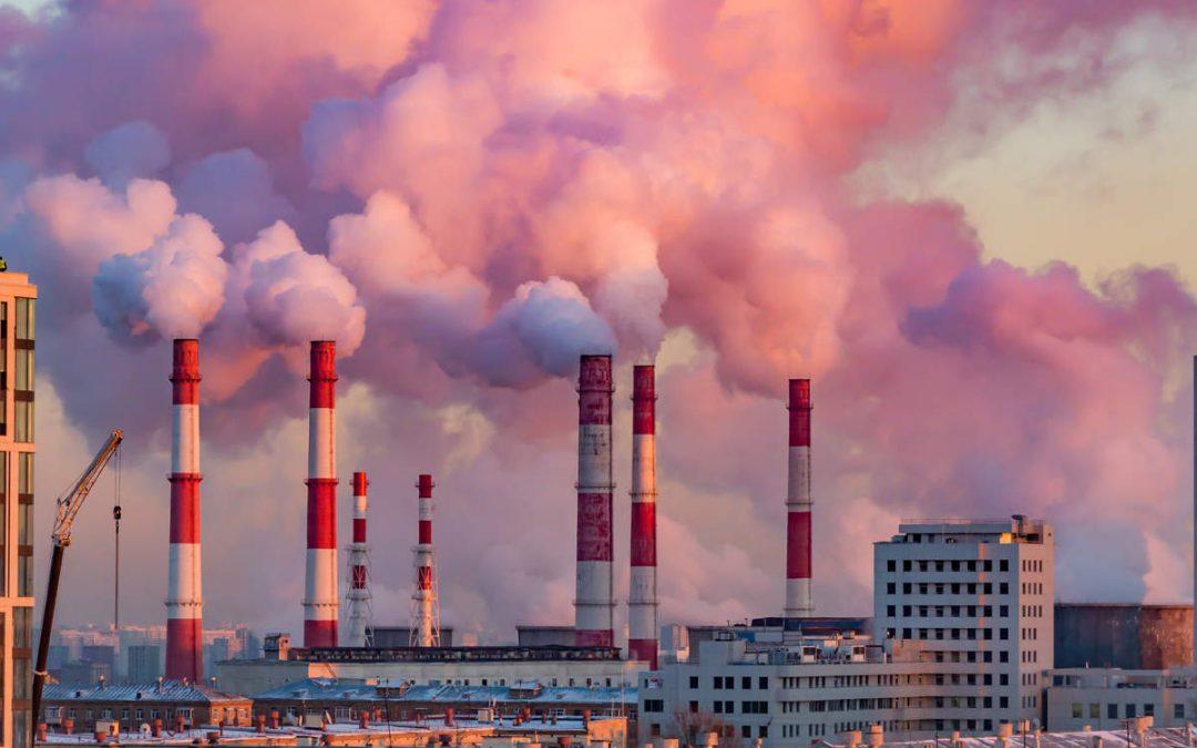 """""""La mano di verde"""" delle grandi imprese: le """"zero emissioni nette"""" e le """"soluzioni basate sulla natura"""" sono truffe letali"""